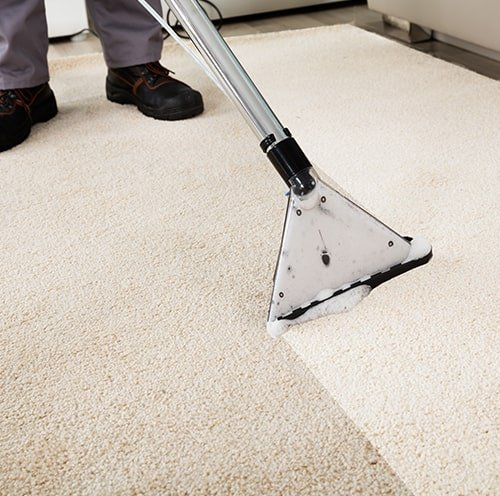 Carpet Care Deep Clean Vacuuming